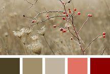 Ladění barev