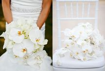 My Dream Wedding / All these pins here are my dream elements at my wedding one day. PURE LOVE / by Asiki Manqupu