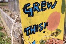 Garden Art / Pretty up your school garden with some fresh, artsy signage.