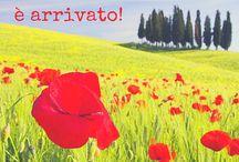 Mesi, Stagioni e Festività / months, seasons, celebrations, mesi, stagioni, festività, ricorrenze