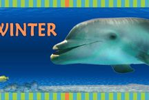 Teaching - Marine Biology Lessons