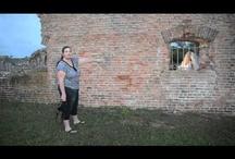 Photo Training Videos by Jason Lanier