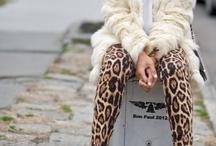 Leopard Addiction