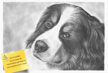 My pet portraits / Pet portraits I have drawn in graphite or colored pencil. Most of them are commissioned work.