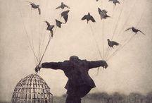 ouvrez la cage aux oiseaux / by Oledie Hanouna