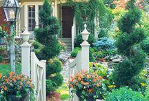 Backyard Ideas / by Ali Carter