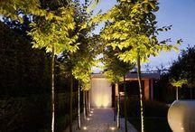 belső kertek