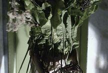 Decadent / Decadent. material: Armoracia rusticana, Lupinus, Cirsium arvense. model: Mark. foto & floristic: Stas Zubov