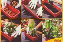 DIY - Faça você mesmo / Dicas e inspirações criativas para você fazer no seu jardim!