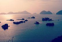 Vivre le Vietnam