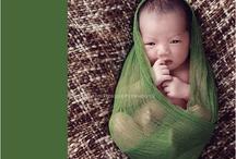 newborn inspiration / by Valerie Steinkoenig