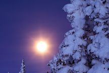 Winter-zima