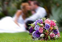 Wedding Photography / by Jennifer Hughes-Post