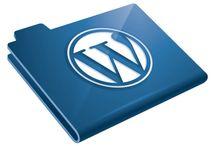 Wordpress / Noutati despre wordpress