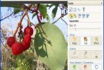 تحميل PHOTO MONTAGE GUIDE مجانا تغيير حجم الصور مع كود التفعيلhttp://alsaker86.blogspot.com/2017/06/Download-PHOTO-MONTAGE-GUIDE-Free-Resize-images-with-activation-code.html