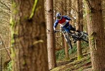 Mountain Bike photo