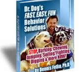 """DOG Traning / How to finally eliminate your dog's annoying behaviors—and why you may actually be teaching him these behaviors…without even realizing it!"""""""