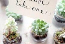 Wedding Favors / by Bridesign Wedding Flowers