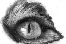 Zeichnungen / Tutorials für Zeichnungen mit Bleistift oder Kreide