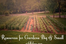 Garden/BackYard/FrontYard