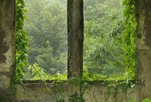 Ikkunoita - Windows