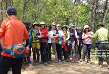 Mountain Hiking / We offering Mountain Hiking opportunity for foreign visitors and its programs are on the basis of hiking with local residents.