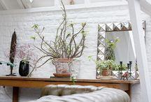 Dream Home ~ More Home Decor