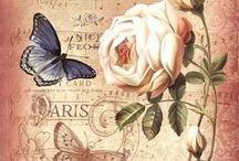 flores francesad