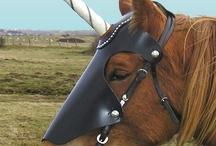 Equines - Ltd