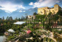 Giardini Italiani / Italian Gardens