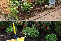 огород органическое земледелие
