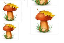 Осень-2: Пейзажи,Грибы,листья...
