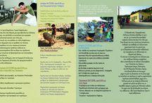 Events & Festivals to participate