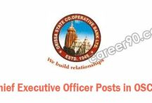 Chief Executive Officer OSCB