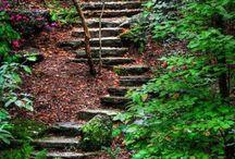 Garden Landscaping Idea