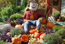 Fall / Fall decorations & recipes / by Sherry Hill