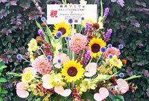 Summer Flower   サマーアレンジメント / アトリエノリーズが制作した夏のお花・アレンジメント作品など。