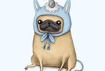 Pug / dog