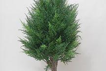 Топиарий искусственные.Artificial Topiary. / Топиарий искусственные - из искусственных цветов, фруктов, травы, листьев, газонов.