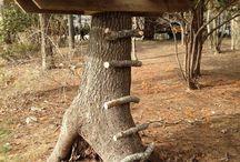Casetta sull albero