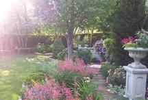 My Garden / by Lynda Coulter
