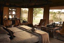 Luxury Camp