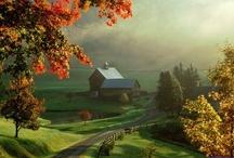 Farm / by Jackie Mitchell