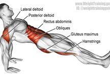 training workout