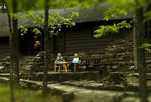 Park Cabins / Photos of Cabins in Arkansas State Parks. Everything from rustic to modern (All with modern amenities).