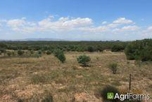 Cape Metropole / Farms for sale around the Cape Metropole in Western Cape