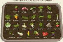 vegetação,