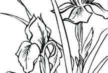 Tegnede blomster