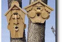 Bird houses diy
