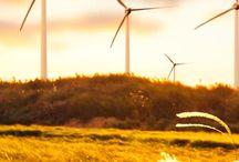 Blaues Wind-Wunder / Bilder zum Windpark Blaue Warthe II und der dazgehörigen Geldanlage